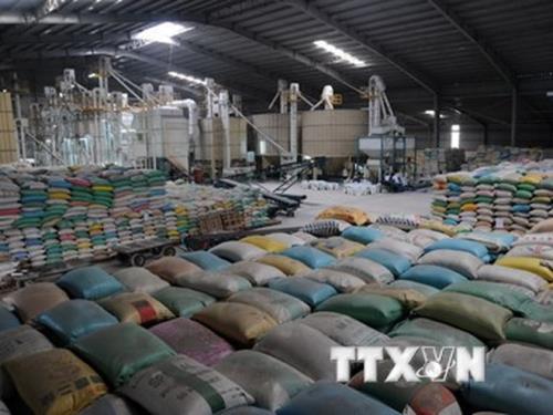 Nghị định thư về xuất khẩu gạo sang Trung Quốc: Gỡ khó cho gạo Việt Nam