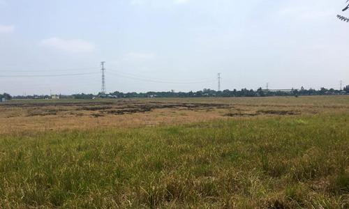 Đất phía Tây Sài Gòn tăng giá gấp đôi