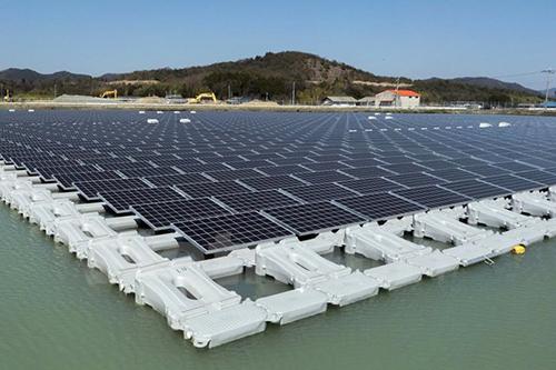 Bamboo Capital đặt cược vào dự án năng lượng mặt trời