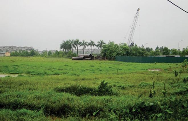 """Gần một nửa các dự án bất động sản tại TPHCM đang """"chết lâm sàng"""""""