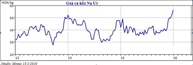 Đồng krone Na Uy đã giảm giá trong suốt năm vừa qua, mất 6% so với EUR và mất 17% so với USD, khiến giá cá hồi nhập khẩu vào hai thị trường châu Âu và Mỹ đều trở nên rẻ hơn.