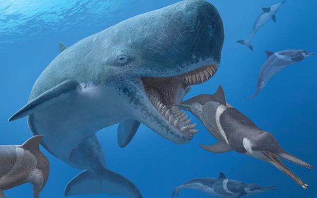 Cổ đông chiến lược và câu chuyện 'nuôi cá mập trong nhà'