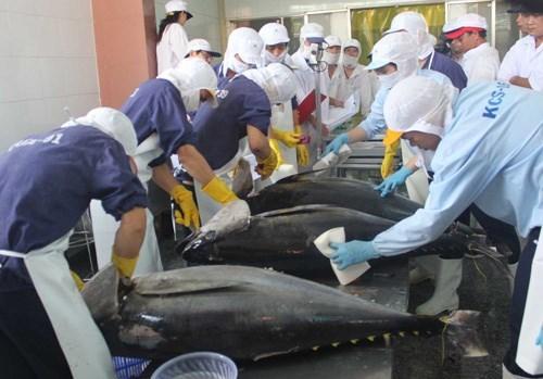 Xuất khẩu cá ngừ sang Mỹ và ASEAN tiếp tục tăng