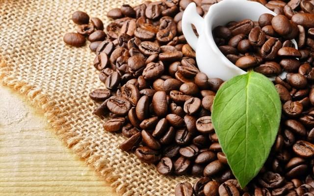 Tiềm năng xuất khẩu cà phê sang thị trường An-giê-ri