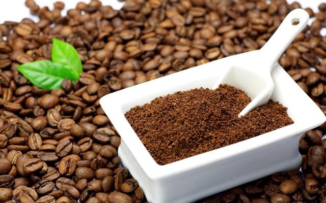 Giá cà phê trong nước tăng trở lại 500 nghìn đồng/tấn ngày 9/10