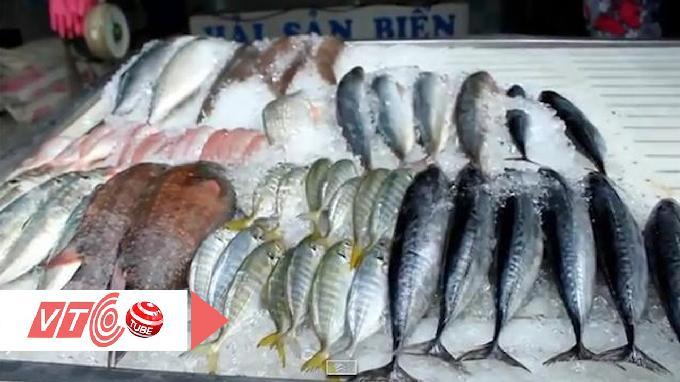 Video -VTC: Cách nhận biết cá tẩm hoá chất