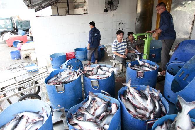 Xuất khẩu thủy sản 10 tháng đầu năm đạt gần 7,3 tỷ USD