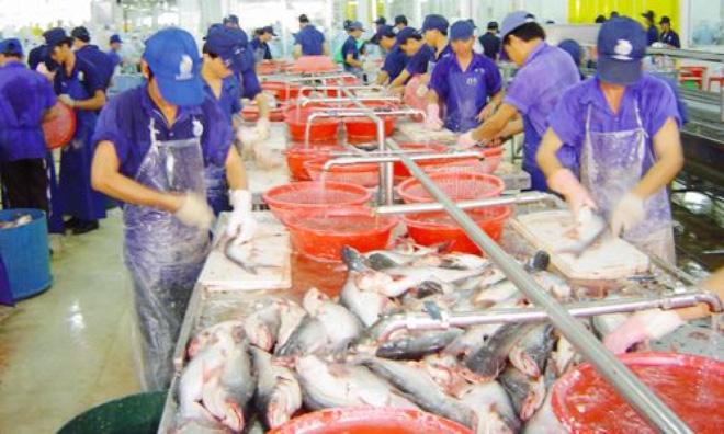 """""""Mỹ áp dụng quy định cuối cùng là không công bằng với xuất khẩu cá da trơn Việt Nam"""""""