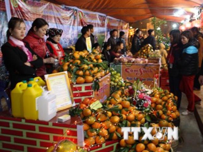 Được mùa cam sành Hàm Yên, người trồng thu nhập cả tỷ đồng