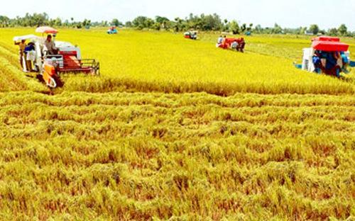 TS. Lê Đức Thịnh: Nhiều cơ chế đất đai đang cản trở phát triển nền nông nghiệp