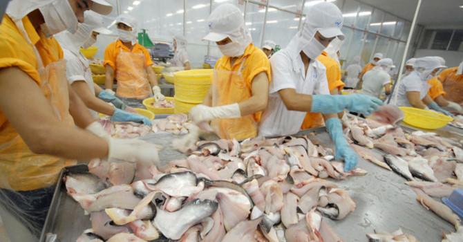 Tìm đường xuất khẩu chính ngạch vào Trung Quốc