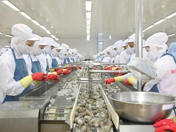 Ngành thủy sản nỗ lực phấn đấu sản xuất trong những tháng cuối năm