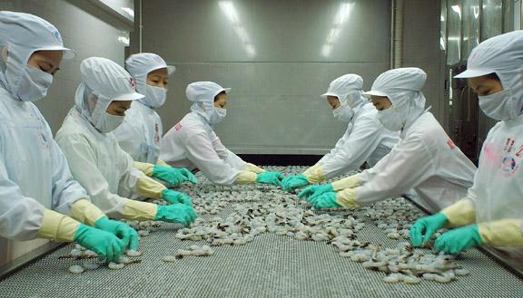 'Khoảng trống' lớn cho hàng hóa Việt tại thị trường Australia