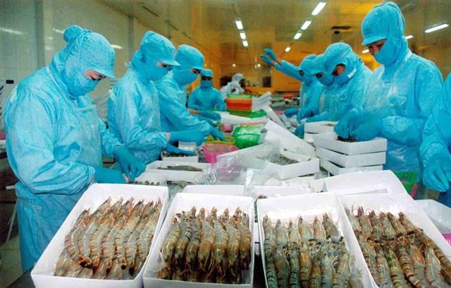 Đồng Yên mất giá, xuất khẩu tôm sang Nhật Bản giảm 18,7%