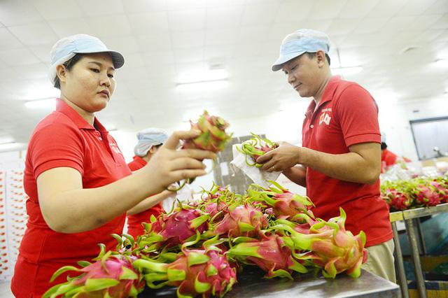 Trở thành thành viên CPTPP: Cơ hội vàng cho Việt Nam