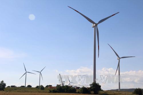 Phát triển điện gió: Biến tiềm năng thành hiện thực