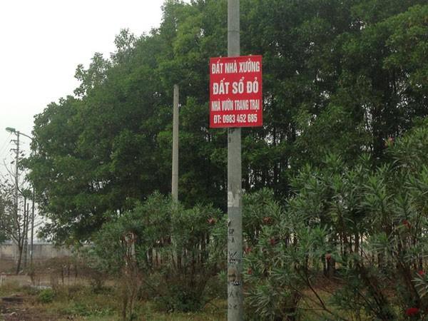 "hang loat tam bien thong tin nha dat moc len quanh ""sieu do thi"" ve tinh hoa lac."