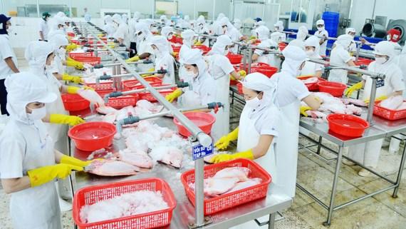Nhiều doanh nghiệp Việt có nguy cơ bị loại khỏi thị trường Mỹ