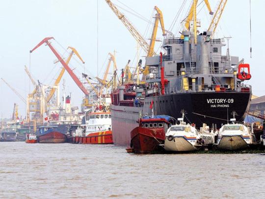 Đến ngành than cũng chê.... đội tàu biển Việt - Ảnh 1.