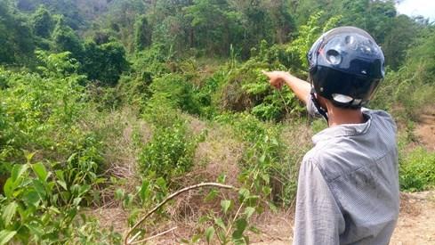 Bình Thuận đề nghị dừng dự án thủy điện nghìn tỉ - ảnh 2