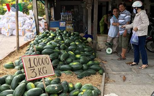 Chiến tranh thương mại Mỹ - Trung gây tăng áp lực cho nông sản Việt