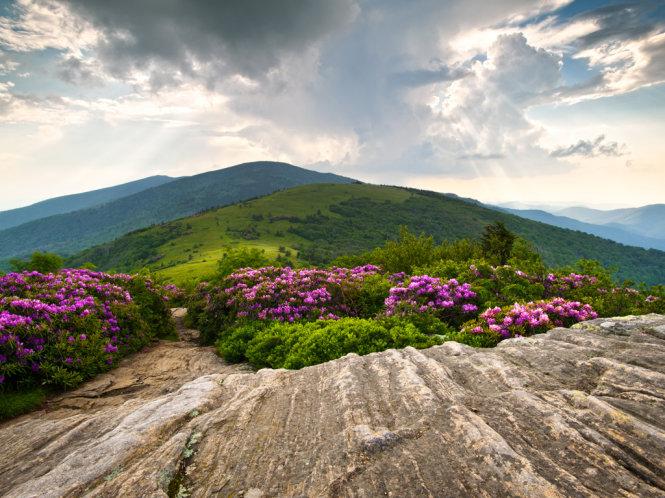 con duong appalachian trail tren phan dat cua my - anh: travelchannel