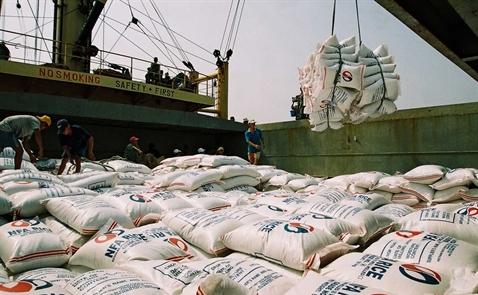 Dự báo thị trường xuất khẩu gạo Việt Nam năm 2018