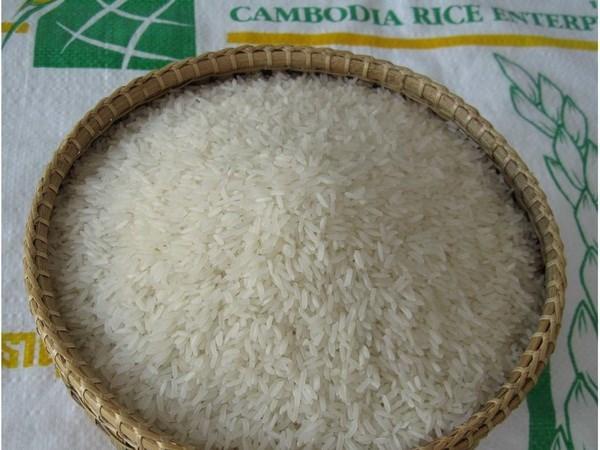 Sức ép cạnh tranh từ gạo Campuchia trên thị trường Việt Nam
