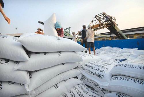 Xuất khẩu gạo 2016 sẽ khởi sắc