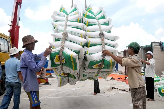 Xuất khẩu gạo chất lượng cao: Cơ hội để doanh nghiệp vượt khó