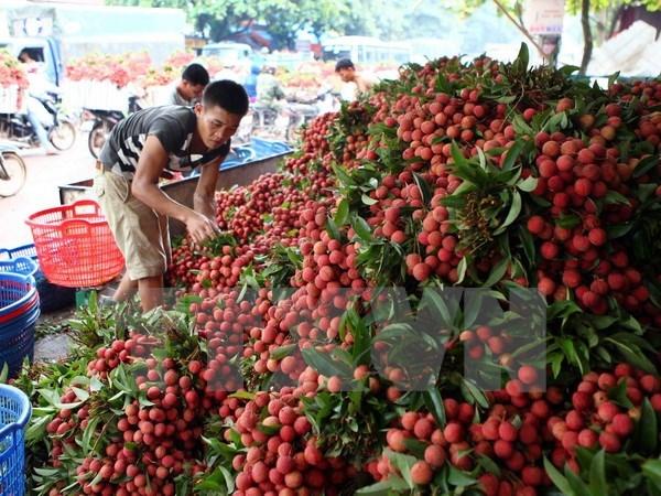 Tin Việt Nam - tin trong nước đọc nhanh 15-06-2016
