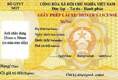 Lùi thời hạn cấp giấy phép lái xe quốc tế - ảnh 1
