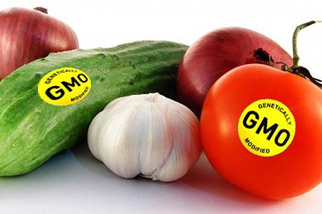 Thực phẩm biến đổi gen vào Việt Nam từ bao giờ?