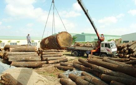 Áp lực tỷ giá, ngành gỗ cần nhiều hơn 500 triệu USD để nhập khẩu