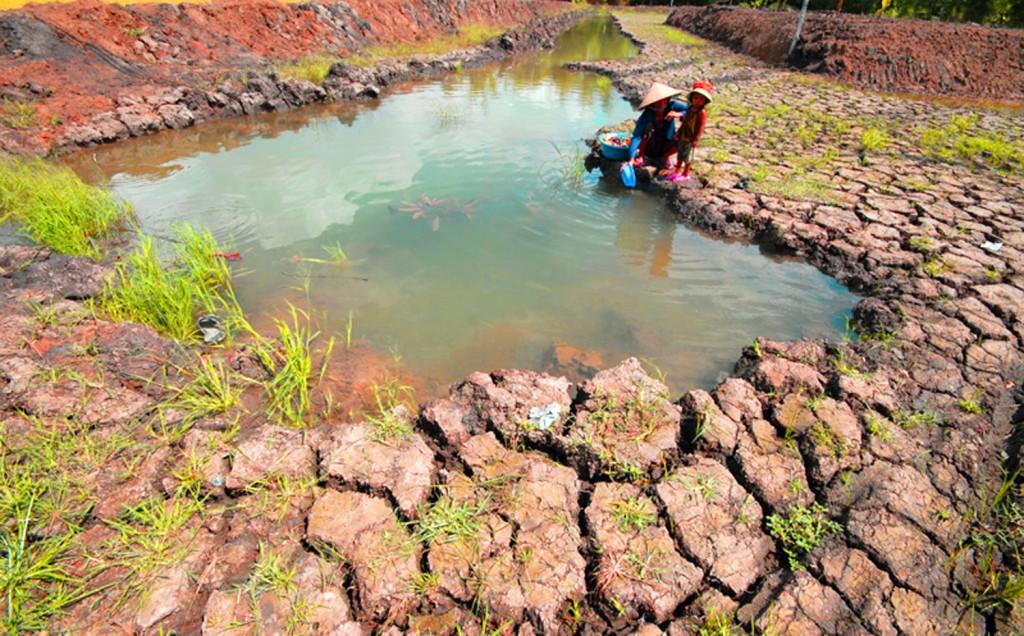 Hạn hán và kinh tế Việt Nam dưới góc nhìn VinaCapital