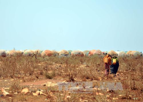 Biến đổi khí hậu – mối nguy đối với kinh tế nhiều nước