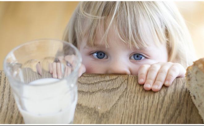 Muốn truy thu thuế 8 doanh nghiệp sữa, Tổng cục Hải quan PHẢI có đủ 12 văn bản sau