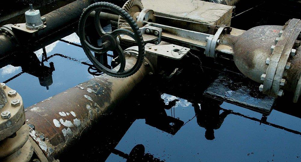 Mỹ có thể bị tổn hại uy tín vì bênh vực Thổ Nhĩ Kỳ về dầu lậu