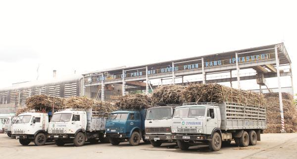 Vì sao Bộ Công Thương xin nhập khẩu đường?
