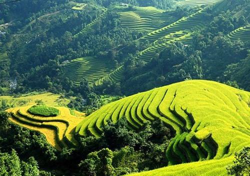 """Những điểm đến ở Việt Nam từng """"quyến rũ"""" các sao thế giới"""