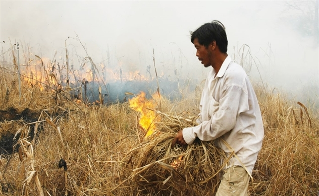 Kinh tế Việt Nam: Màu xám của nông nghiệp