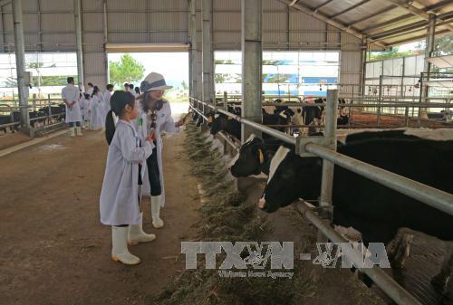 Nông nghiệp 4.0: Cửa đã mở nhưng vào theo hướng nào?
