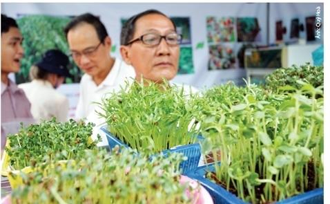 Nông nghiệp kiểu Mỹ ở Việt Nam