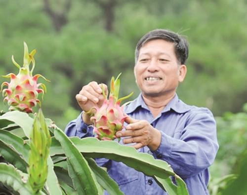Nông sản Việt yếu ở nhiều khâu