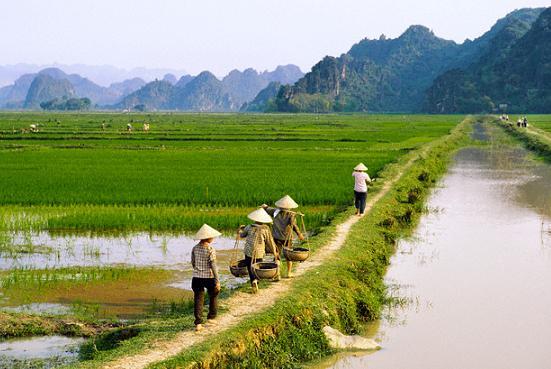 Tin Việt Nam - tin trong nước đọc nhanh 16-03-2016