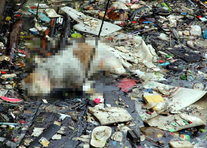 Đảo ngọc Phú Quốc ngập ngụa rác