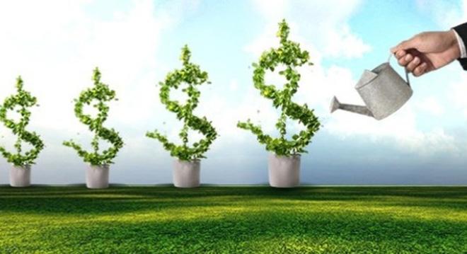 Room ngoại trên 65% trong 1 năm liên tục sẽ thành doanh nghiệp FDI?