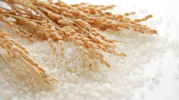 Xuất khẩu gạo của Ấn Độ có thể giảm do giá tăng
