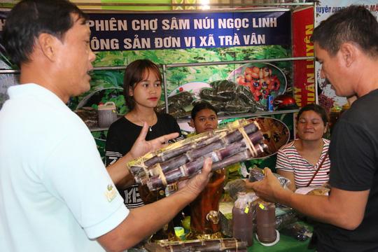 Sâm Ngọc Linh gần 100 triệu/kg vẫn đắt như tôm tươi - Ảnh 3.