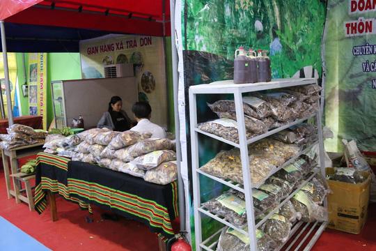 Sâm Ngọc Linh gần 100 triệu/kg vẫn đắt như tôm tươi - Ảnh 5.